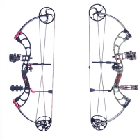 勇士复合弓Warrior Compound Bow